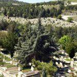 Mezarlıklar Tekrar Ziyarete Açıldı